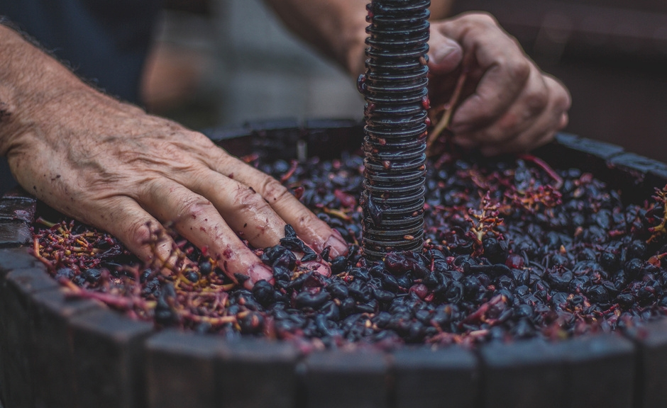 A Itália é a maior produtora de vinho do mundo O Portugues